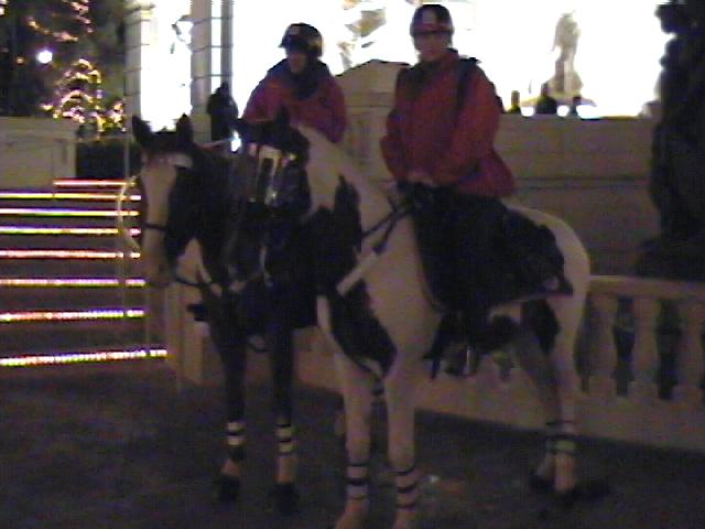 Mounted patrol in front of the Monte Carlo